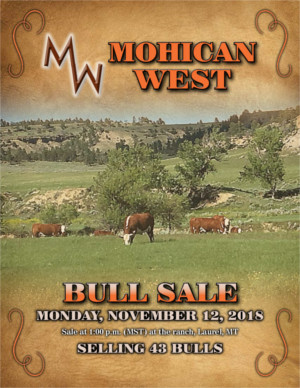 Mohican West - Montana - November 12, 2018