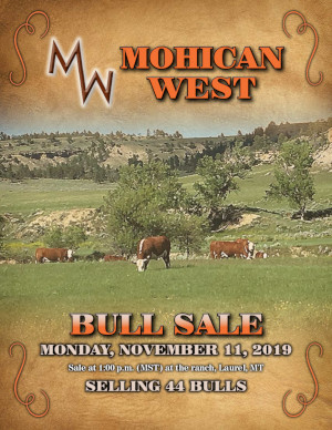 Mohican West Bull Sale - November 11, 2019