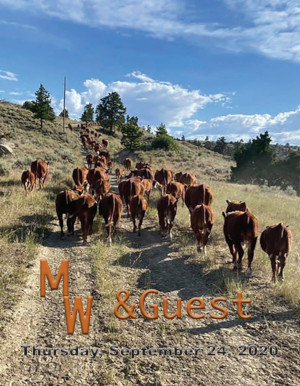 Female Sale with McMurry Cattle Catalog